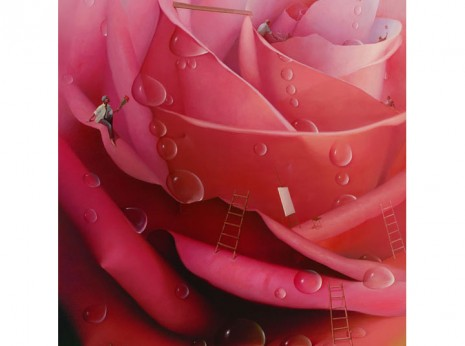 Victor Bregeda, Romancing the Rose